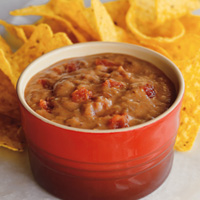 Salsa & Refried Bean Dip